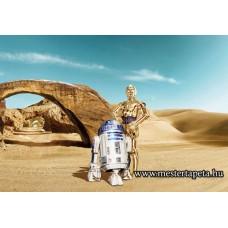 Star Wars R2-D2 és C-3PO poszter 8-484 ingyenes szállítással