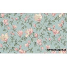 Magnolia tapéta 964943