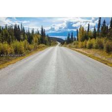 Hosszú út poszter 8-532 ingyenes szállítással