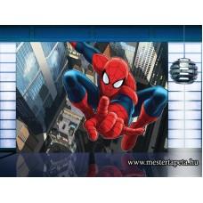 Pókember poszter FTD 2209