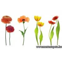 XXL Virágok poszter 470360