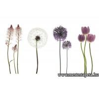 XXL Virágok poszter 470361