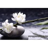 XXL Zen virág poszter 470369